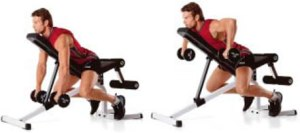 Reverse grip incline bench 2-arm dumbbell rows